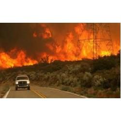 Οι συνέπειες της πυρκαγιάς την περίοδο που την ακολουθεί