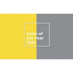 Το χρώμα της χρονιάς 2021.