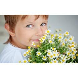 Αλλεργίες στα παιδιά.